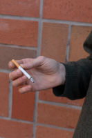 http://alexandermeyer.org/files/gimgs/th-51_Hand and Cigarette 3, 2020.jpg